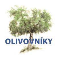 Galén - Olivovníky