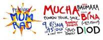 Nový jihlavský festival odstartují Mucha a Baumaxa
