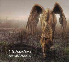 Strunovrat - Na křídlech...