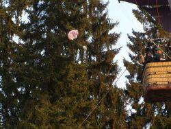 Folkový kvítek je festival, kde návštěvníkům létají pečení holubi do pusy!